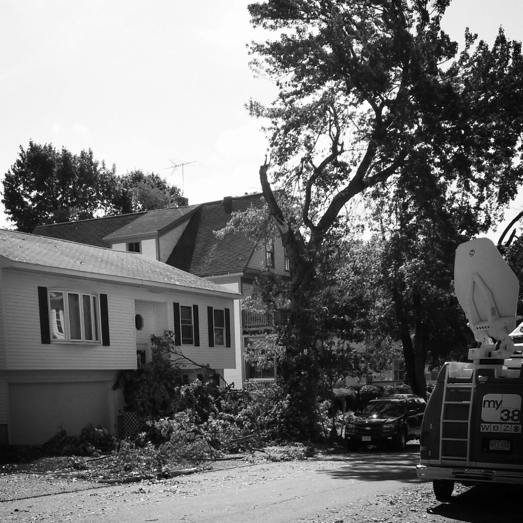 Shredded tree, the Boston CBS affiliate news van ON SCENE.
